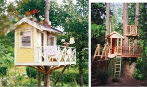 Как построить дом на дереве – воплощаем детскую мечту в реальность