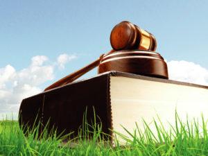Обновлен список нарушений, за которые грозят наказания вплоть до изъятия участка