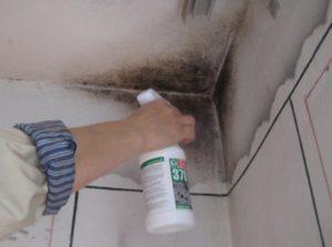 Чем обработать потолок в квартире от грибка и как избавиться от плесени