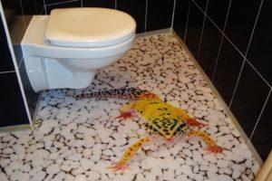 Монтаж 3д полов в ванной и туалете своими руками