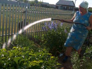 Изменения для садоводов и огородников в пользовании водой с 2019 года