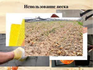 Применение песка в строительной сфере — виды и характеристики