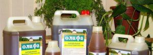 Олифа Оксоль – чтобы защитить деревянные изделия от внешних факторов