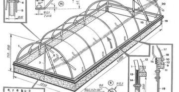 Парник своими руками – конструкция, материалы и примеры строительства