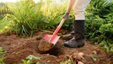 Лопаты для сада